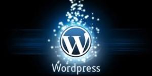 Wordpress Sparkle Free WordPress Training Series